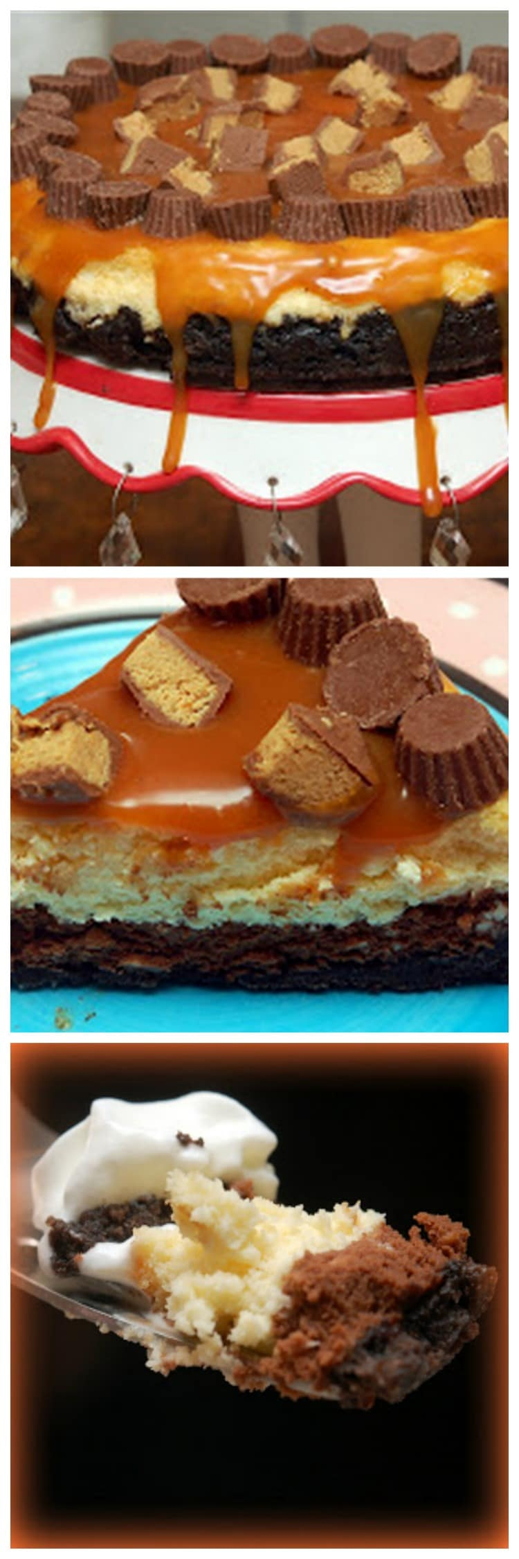 Caramel & Peanut Butter Chocolate Cheesecake