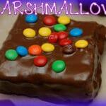 HOMEMADE MARSHMALLOWS DIPPED IN DARK CHOCOLATE!