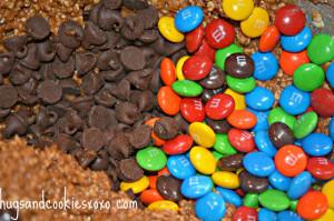 Skippy Dark Chocolate Peanut butter Gluten Free Oatmeal M & M cookies
