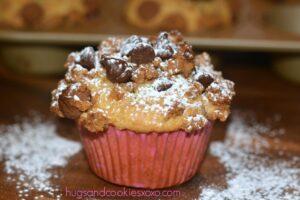 Cinnamon & Graham Cracker Chocolate Chip Muffins