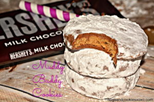 FALL IN LOVE WITH MUDDY BUDDY COOKIES