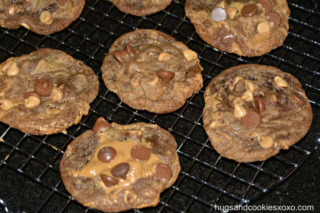 Salted Double Chocolate Peanut Butter Cookies Recipe — Dishmaps