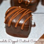 Chocolate Dipped Magic Custard Cake Squares.