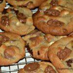 Chocolate Dipped Gummy Bear Cookies