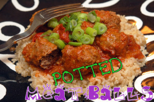One Pot Meatballs! Aka: Potted Meatballs