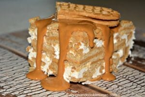 No Bake Nutter Butter Freezer Pie