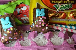 Peeps In Brownie Blankets