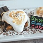 S'mores Cheesecake Squares
