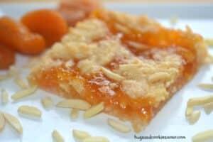 Coconut Almond Apricot Bars