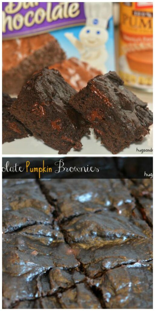 dark chocolate pumpkin brownies with chips