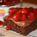 Chocolate Raspberry Snack Cake